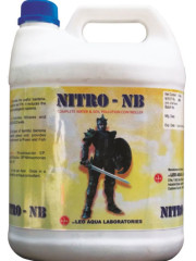 nttro-nb